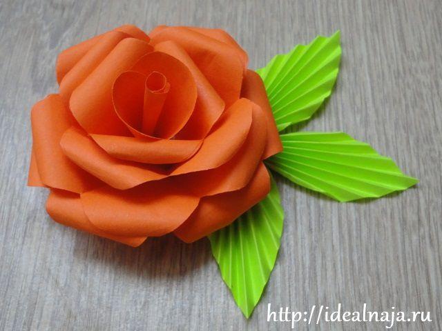 Цветы своими руками из бумаги мастер класс видео