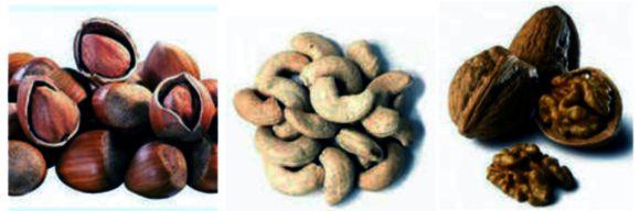 Орехи – абсолютная польза