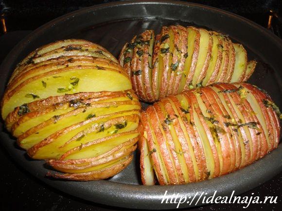 Картофель в духовке Гармошка