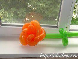 Роза из воздушных шаров