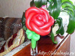 Роза из шариков в бокале